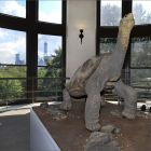 10b. Lonesome George On View Rm 140916 1010 140x140