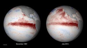 Comparación De La Temperatura Del Pacífico En 1997 (izquierda) Y 2015 (derecha)